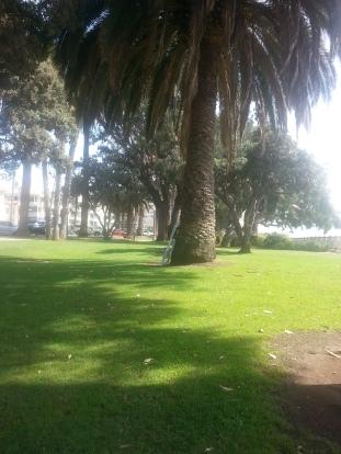 Palisade Park Santa Monica, CA